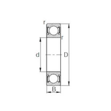 Rodamiento 6010-2RS CYSD